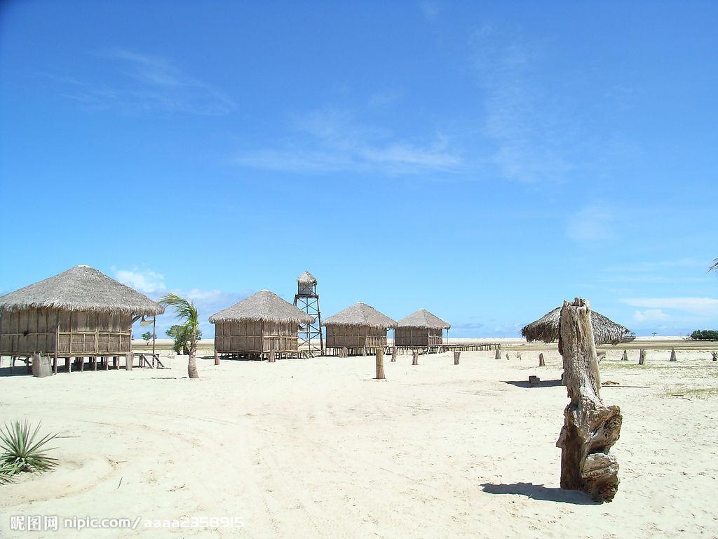马达加斯加岛(已奖)