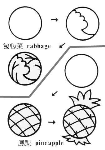 简笔画简单画 正方形简笔画30 青蛙 包心菜 凤梨