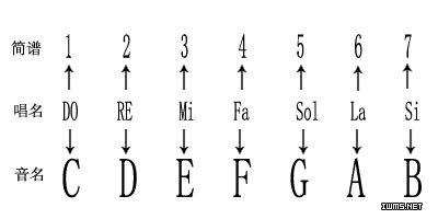 础乐理知识2 五线谱